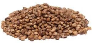 wholesale hemp seeds for sale immediatly