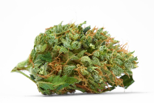 AC Diesel CBD Hemp flower buds for sale bulk Colorado