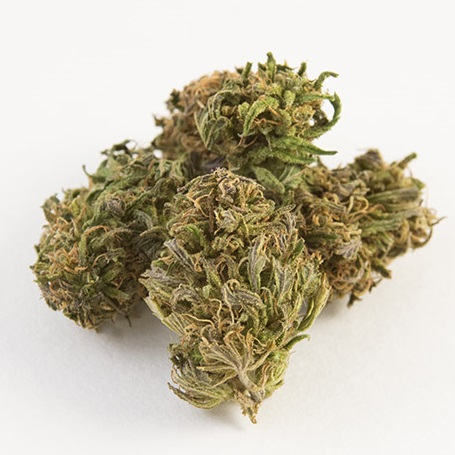 Lifter CBD Hemp Flower for Sale Bulk