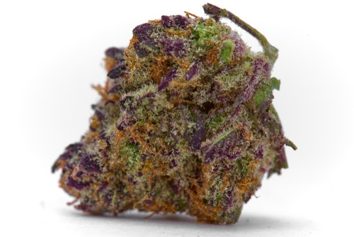 Purple BOAX CBD Hemp Flower - IHF LLC