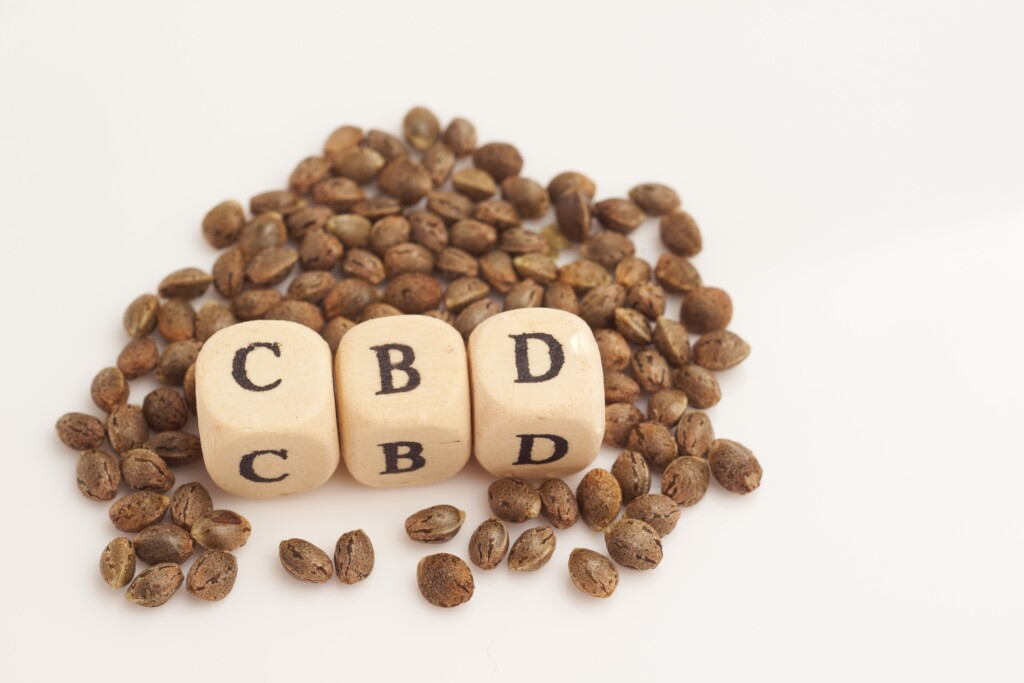 CBD hemp seeds feminized and un-feminized