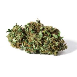 The 8 Top Best Legal CBD Hemp Flower Strains - IHF LLC