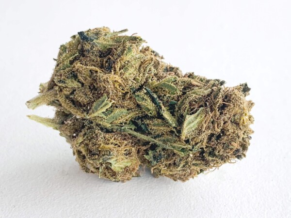 t1 hemp flower bud for sale
