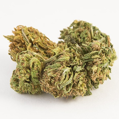 Cherry Hemp Flower for Sale Bulk