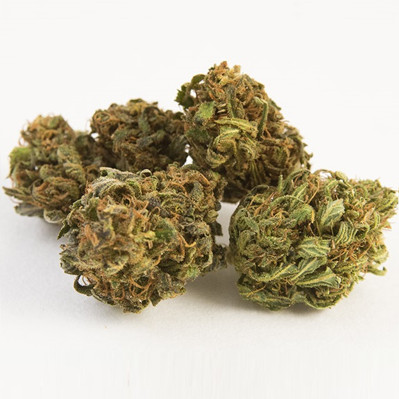 Oregon OG hemp flower for sale in bulk online