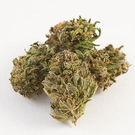 lifter strain cbd hemp flower pre roll joints
