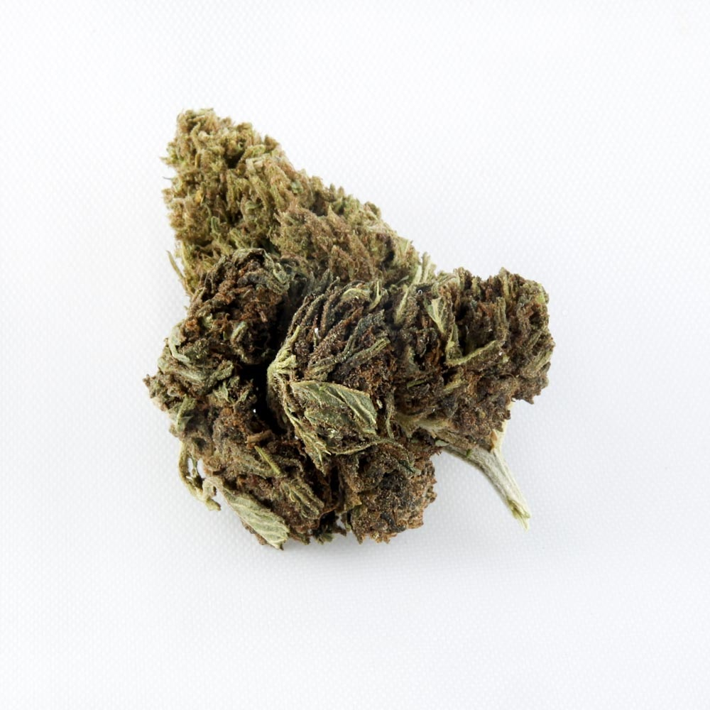 closeup of Berry Exotic CBD hemp bud