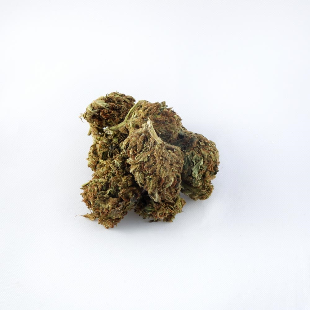 closeup of Boax Bubblegum CBD hemp bud