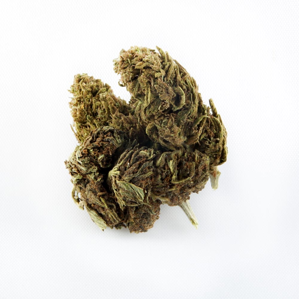 closeup of Boax CBD hemp bud