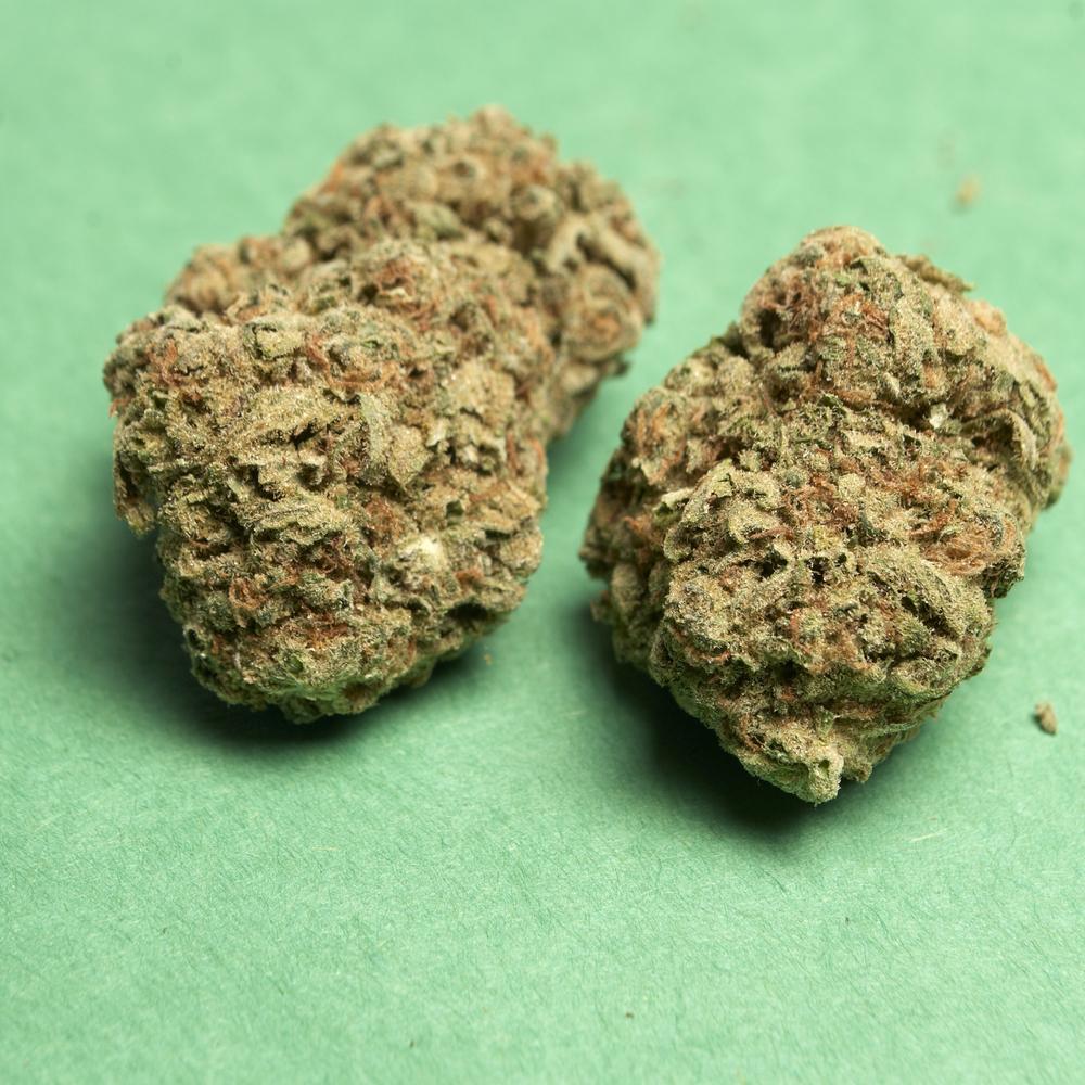 closeup of Frosted Lime CBD hemp bud