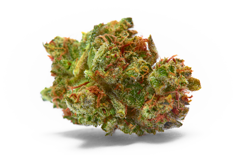 closeup of Sour J CBD hemp bud