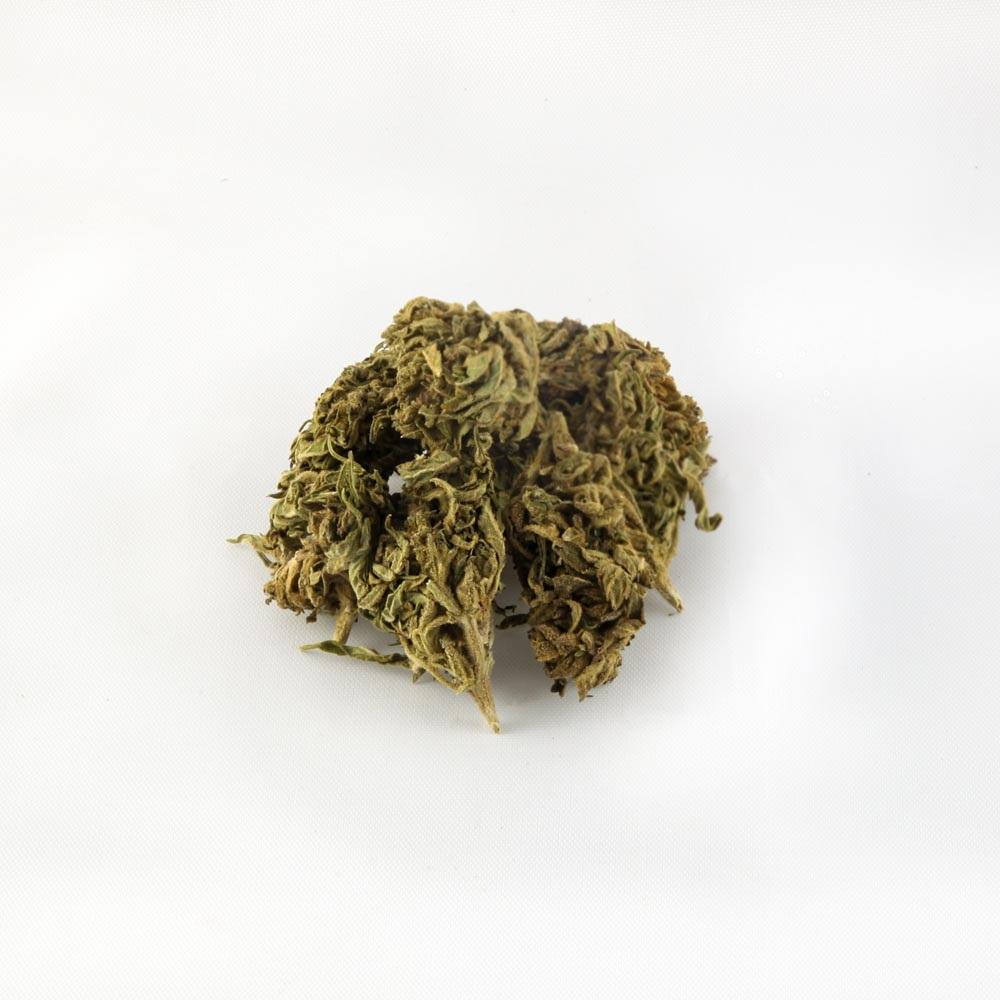 closeup of Spectrum CBD hemp bud