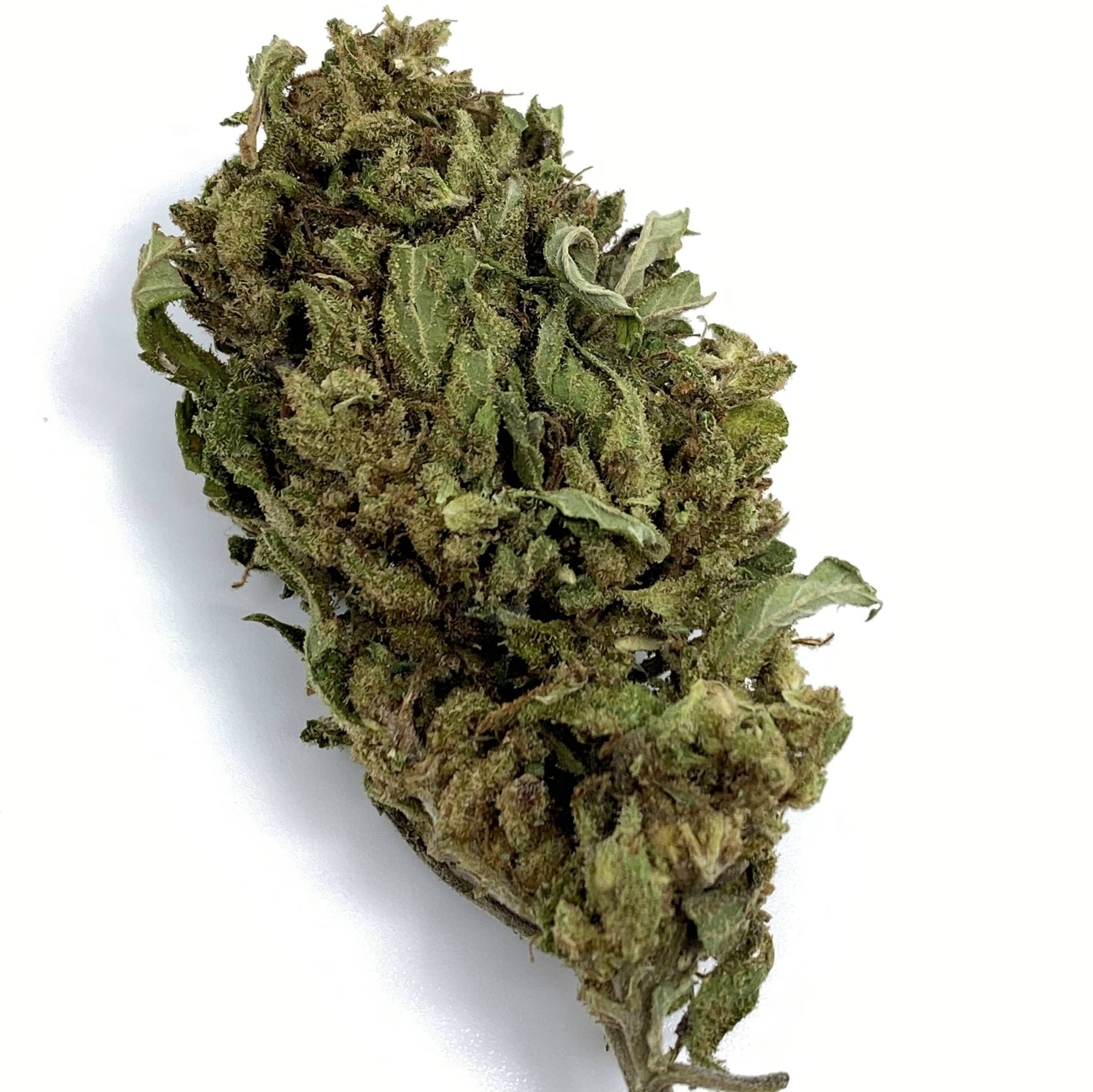 russian cbd hemp flower for sale online