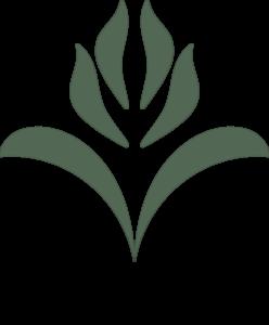ventura seed company logo
