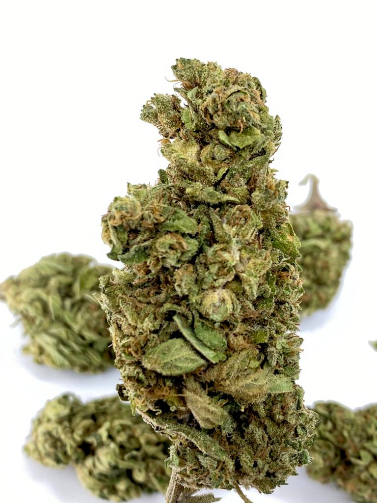 Super Lemon Haze CBD Hemp Flower for Sale Online