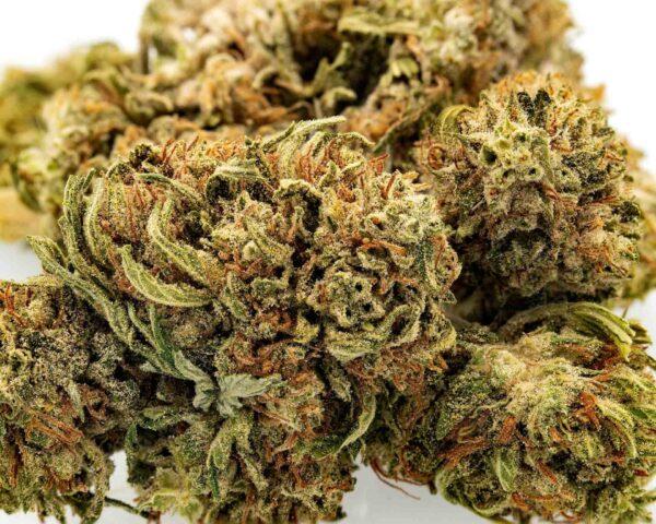 jack frost cbd hemp flower for sale online