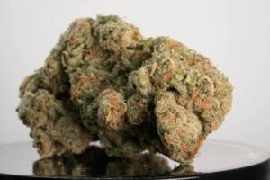 Fruity Pebbles OG cannabis bud
