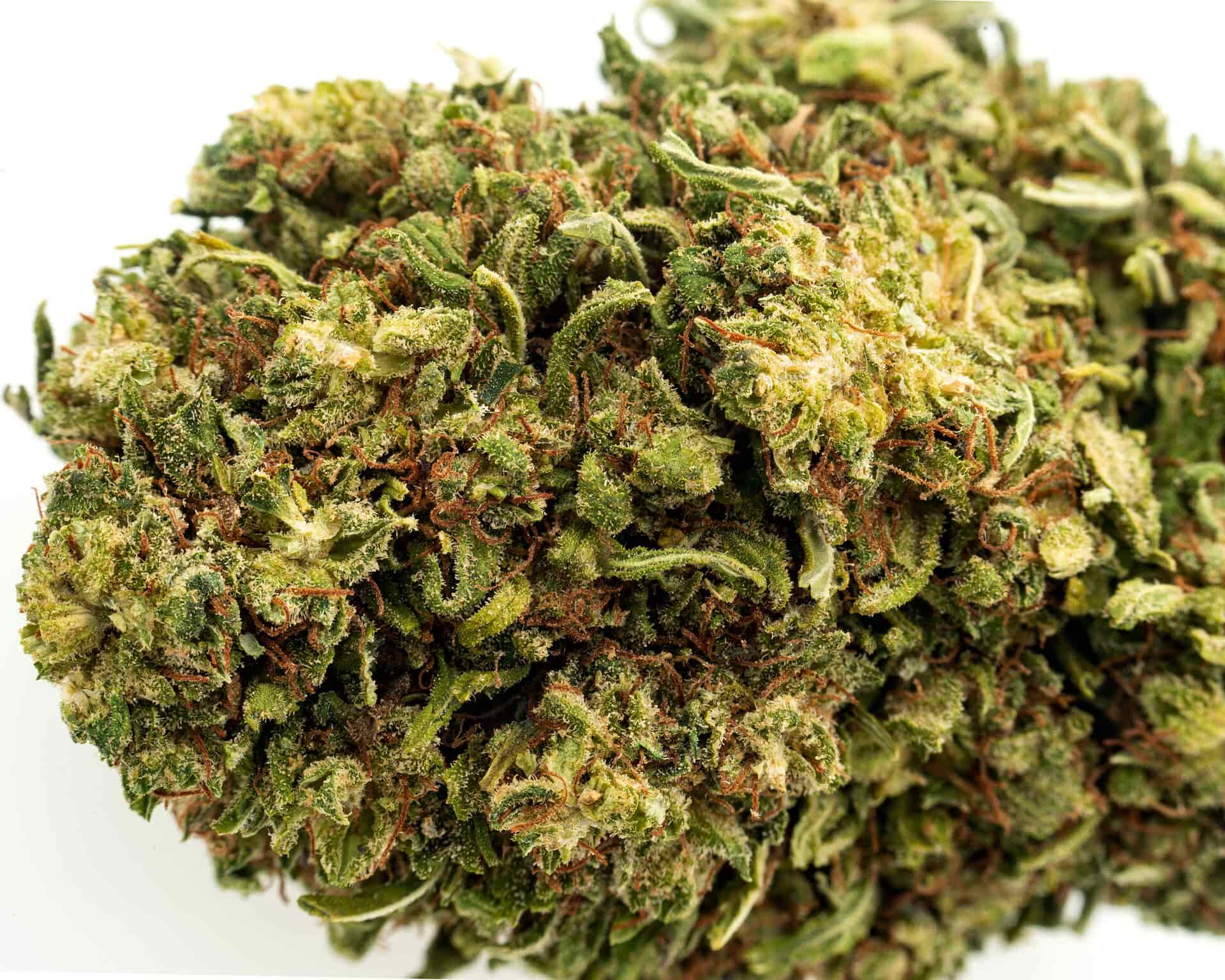 indica kush cbd hemp flower for sale online