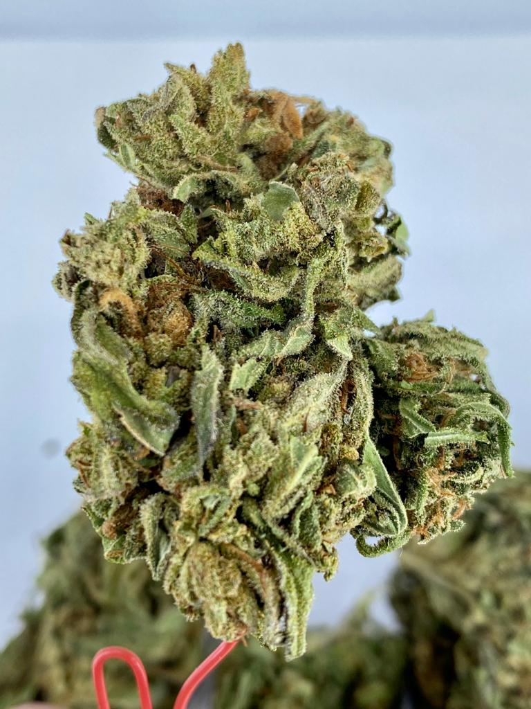 Durban Poison CBD Hemp Flower for Sale