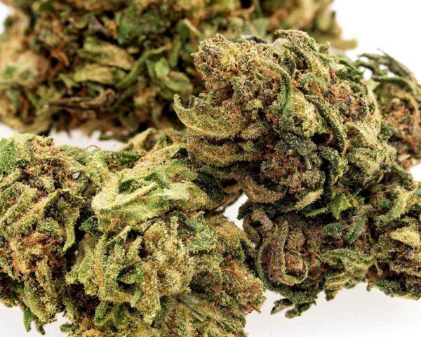 Durban Poison CBD Hemp Flower for Sale Online
