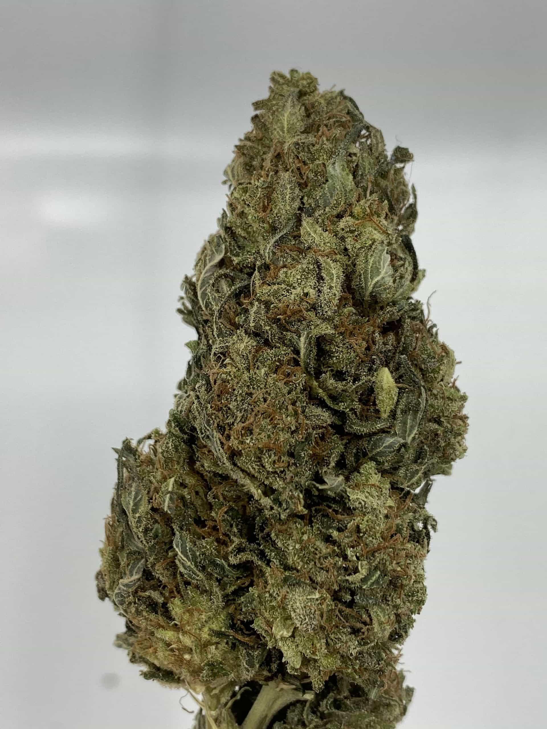 white widow cbd hemp flower for sale online