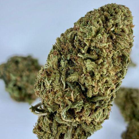 Merlot Cannabis bud