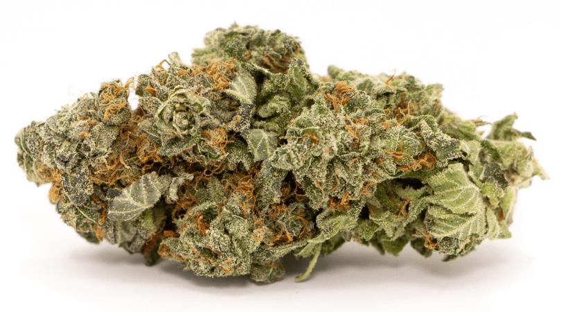 Bruce Banner Cannabis bud