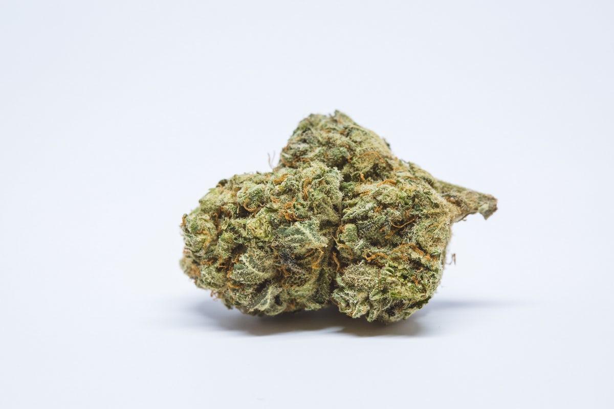 Cinderella 99 Cannabis bud