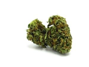 Alien OG Cannabis bud