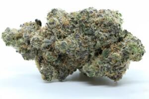 Cookies and Cream Cannabis Bud