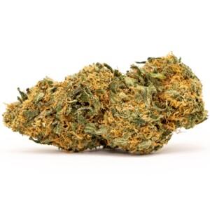 Ghost Train Haze Cannabis bud