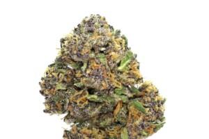 Hindu Kush Cannabis bud