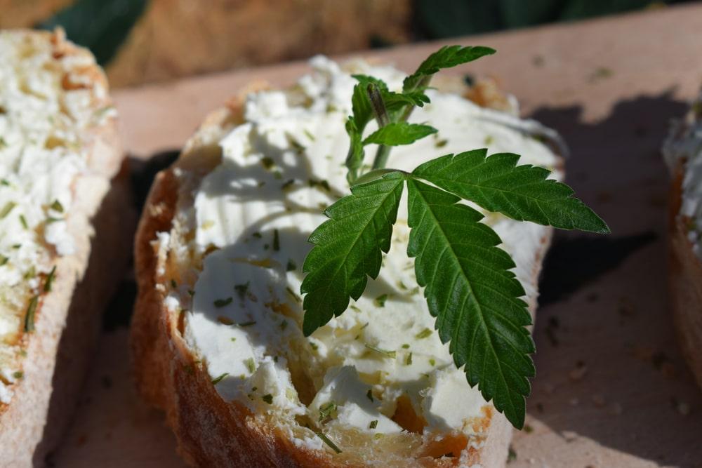 Lamb's Bread Cannabis Strain