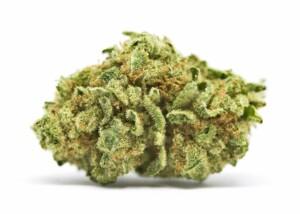 Papaya Cannabis bud