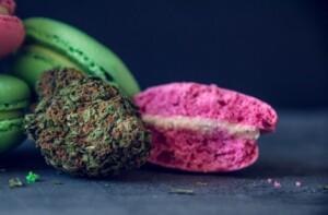 Pink Cookies Cannabis bud