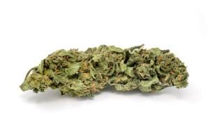 Pinkman Goo Cannabis bud