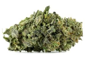 Romulan Cannabis bud