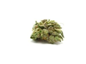 Alaskan Thunderfuck Cannabis bud
