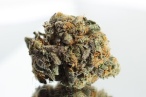 Banana Kush Cannabis Bud