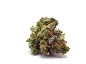 Chemdawg Cannabis bud