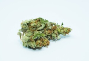 L.A. Confidential Cannabis bud