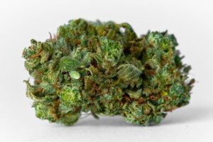 Paris OG Cannabis bud