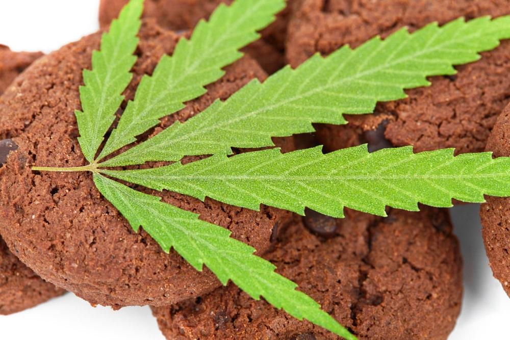 Platinum Cookies Cannabis Strain