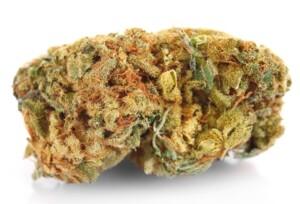Bubba Hash Cannabis bud