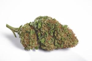Flo Cannabis bud