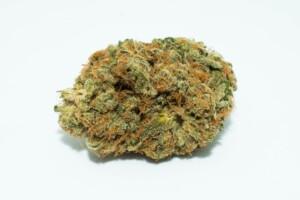 J1 Cannabis bud