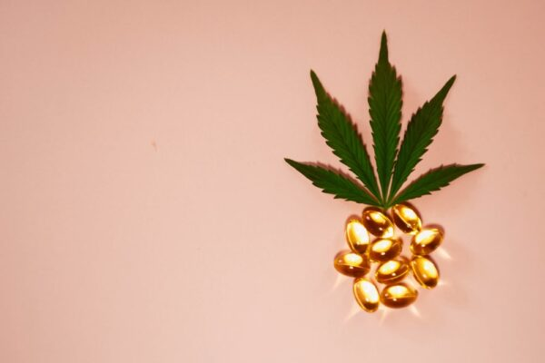 Pineapple Cannabis Strain Review