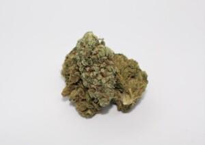 Sour Grape Cannabis bud