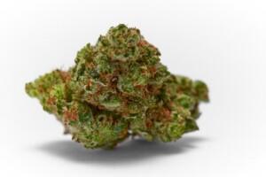Strawberry Diesel Cannabis bud