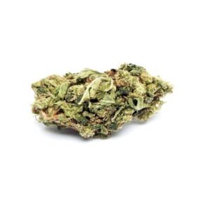 Sunset Sherbert Cannabis bud